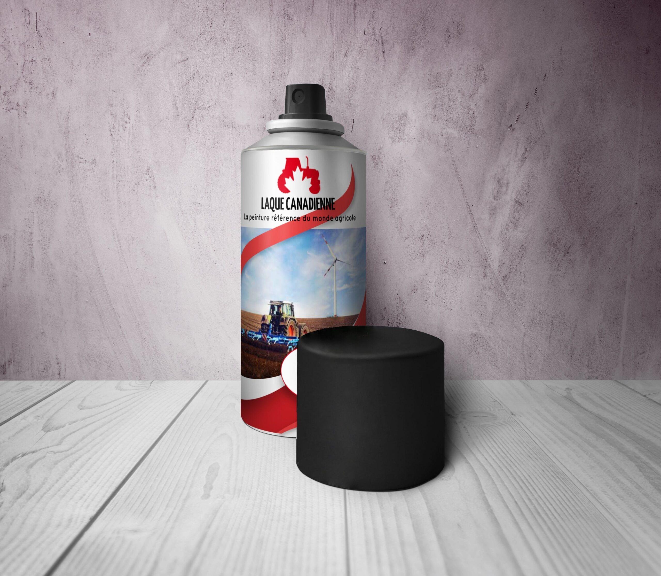 4 points importants à savoir sur la peinture haute température